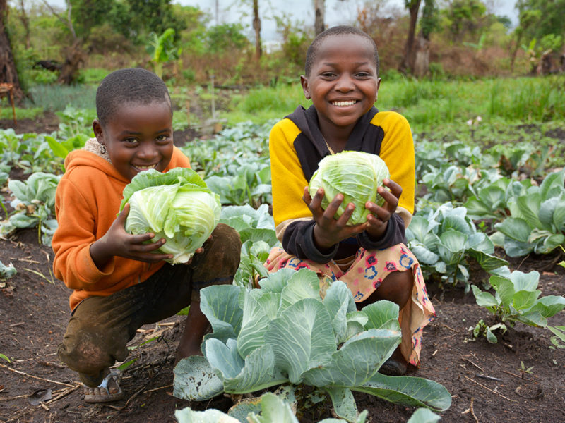 Thank you! Congress just passed the Global Food Security Act!